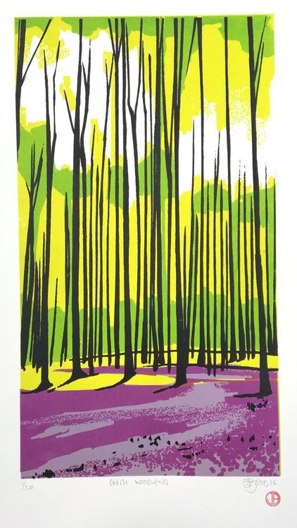 Beech Woodland - Image 0