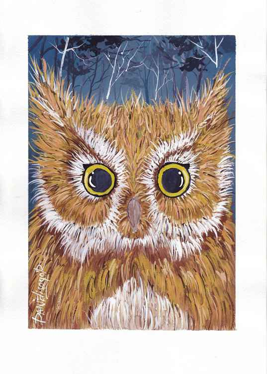 The owl(FREE-SHIPPING)