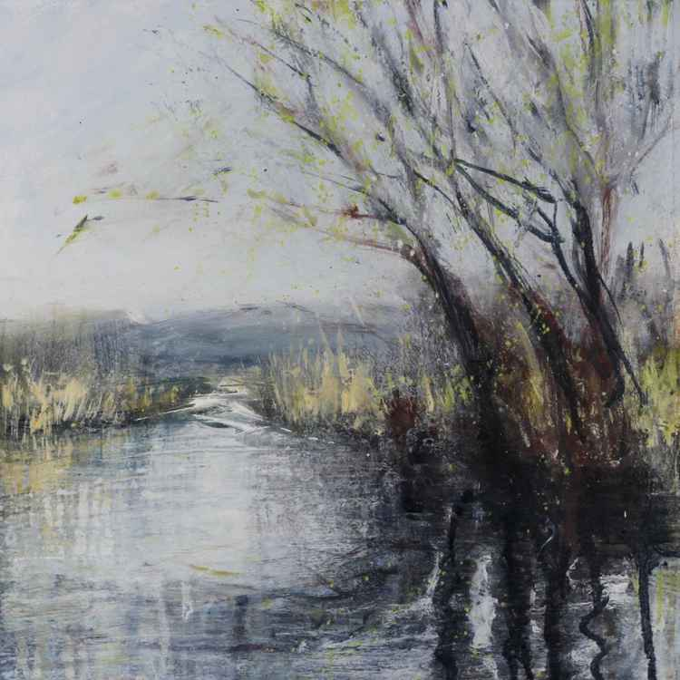 Wellingham Willow -May -