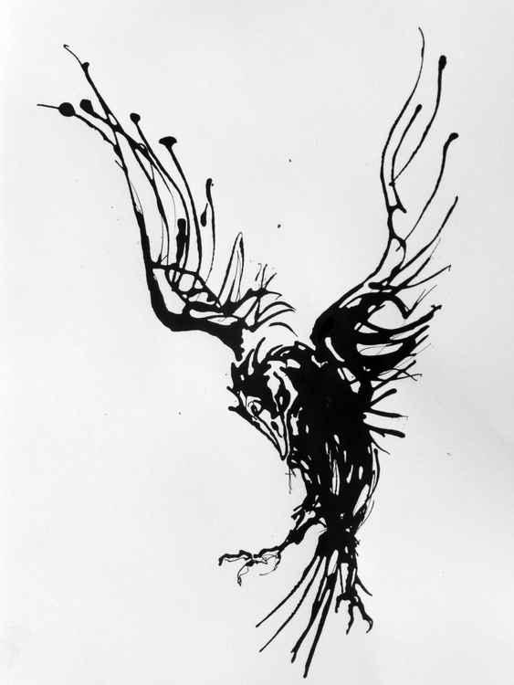 Raven no.4 -