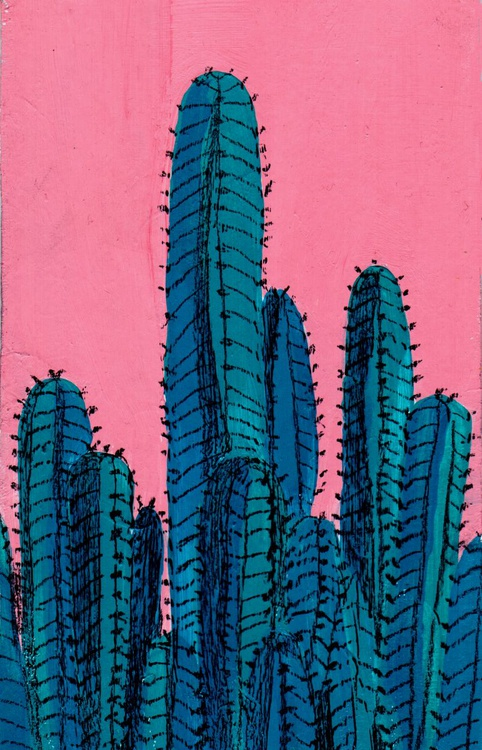 Cactuses - Image 0