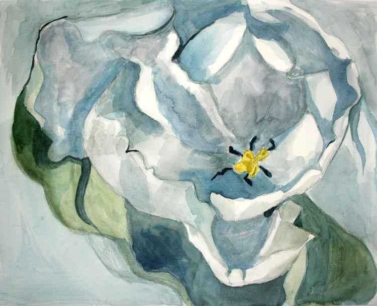A flower, after Georgia O'Keeffe -