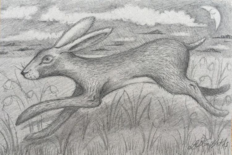 Byzantine Hare Storm - Image 0