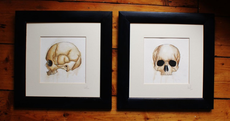 Skull Collection Part II - Image 0