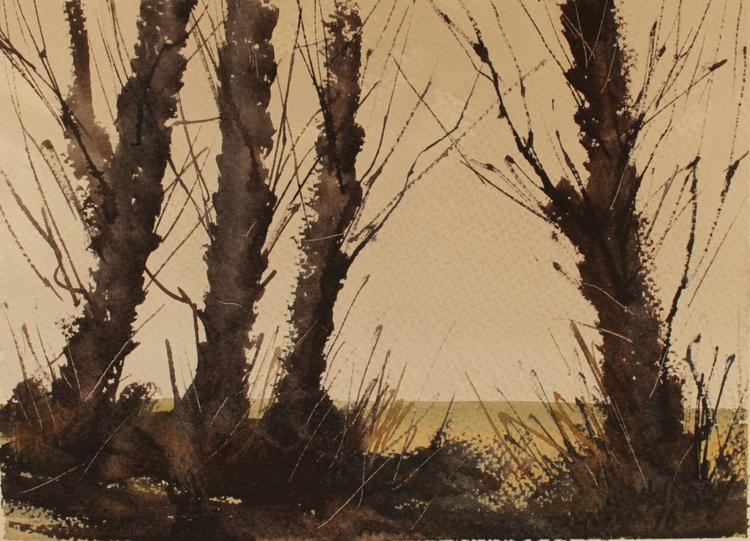 Through the trees 2 - Image 0