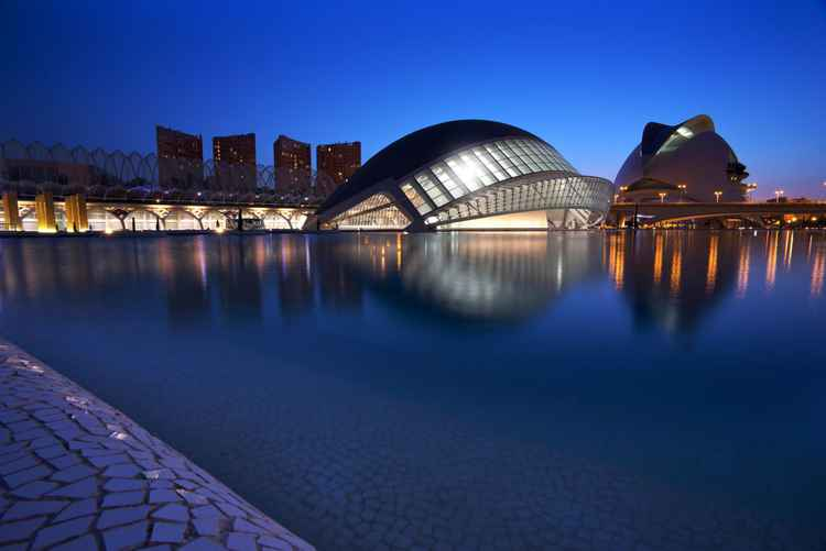 Arts and Science Museum Valencia