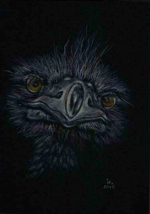 curious ostrich -