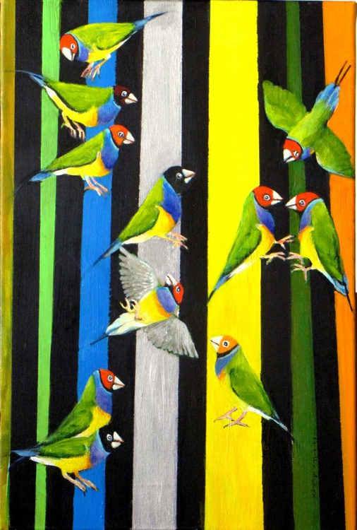 Gouldian finches - Image 0