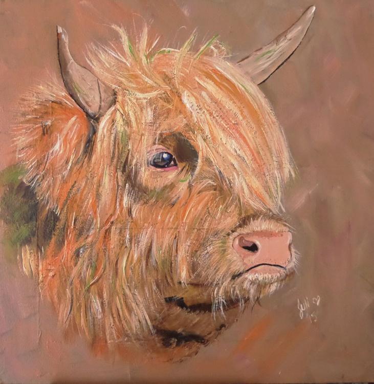 Highland Cow - Image 0