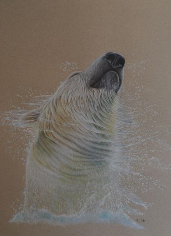 Dancing Waters - Image 0