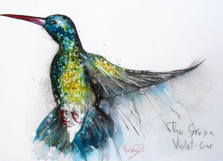 The Hummingbird (The Green Violet-Ear) - Image 0