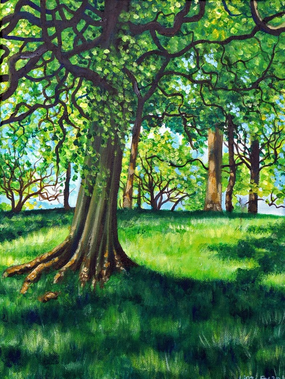 Summer Trees - Image 0