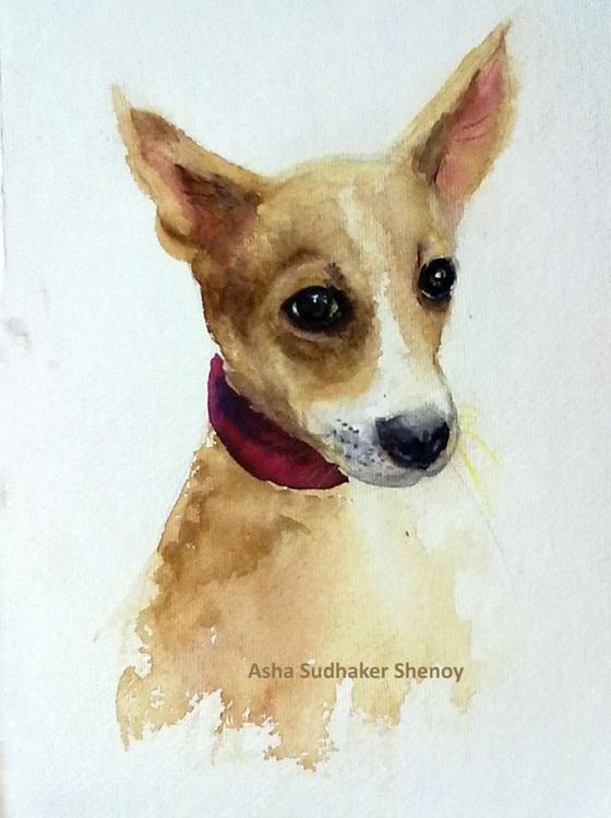 The Doe eyed puppy - Image 0