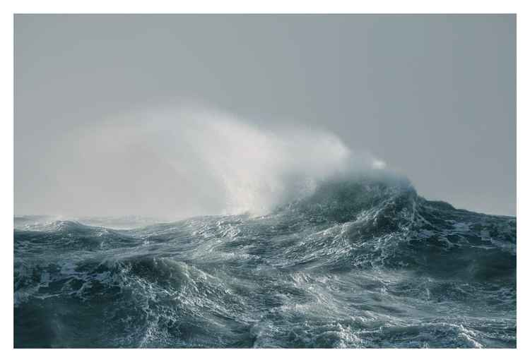 Waveline (Mupe)