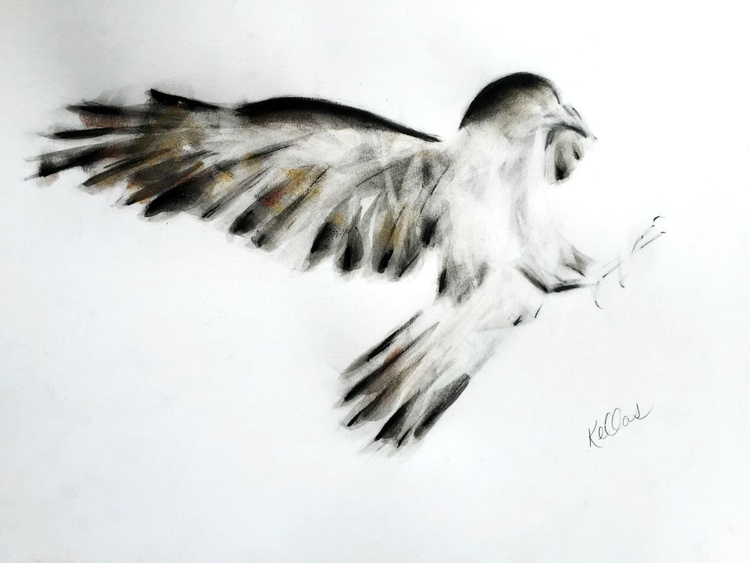 Ink and Charcoal Raven - Image 0