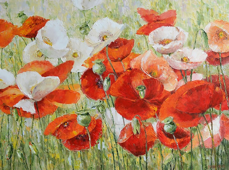 Poppies In The Morning - Image 0