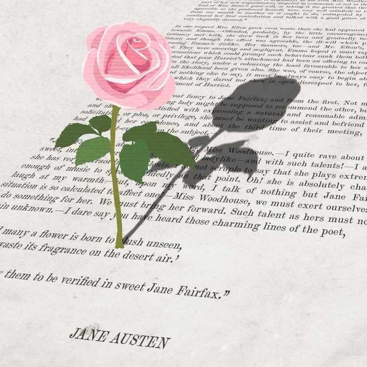 English Rose (Vintage Austen) -