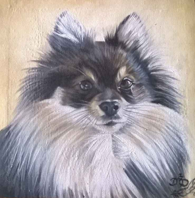 Pomeranian 2 - Commission