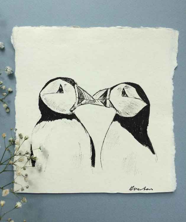 Puffins, Pen and Ink Sketch -