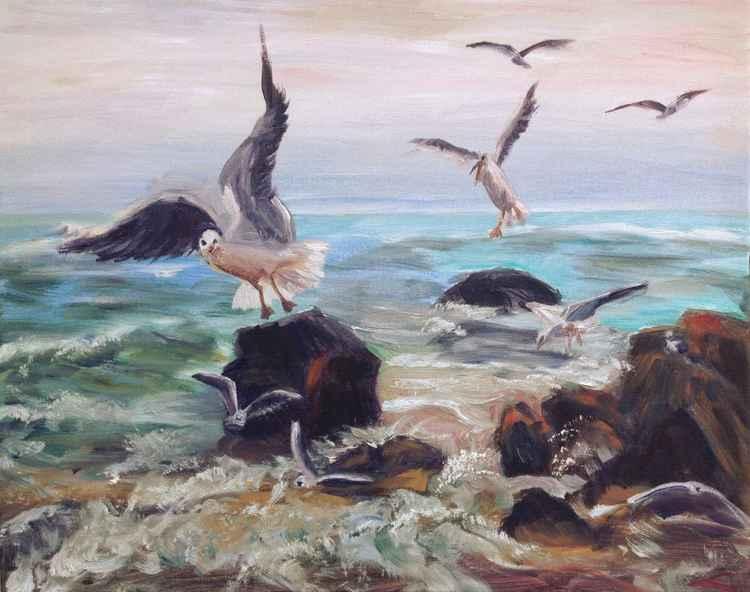 Seagulls 3 -