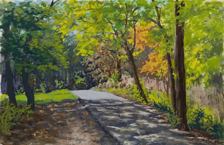 Harms Woods Path - Image 0