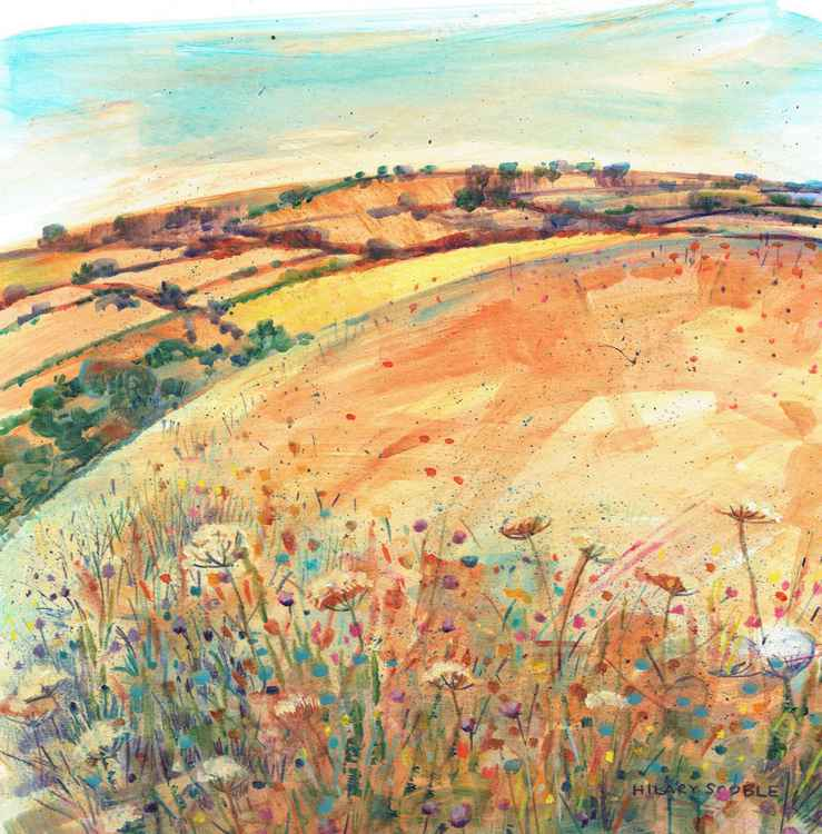 A Downland Summer -