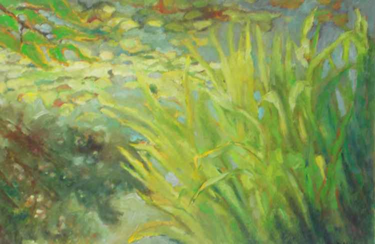 Grasses on Lily Pond