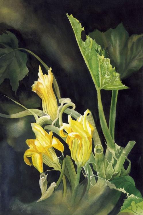 cucumber blossom - Image 0