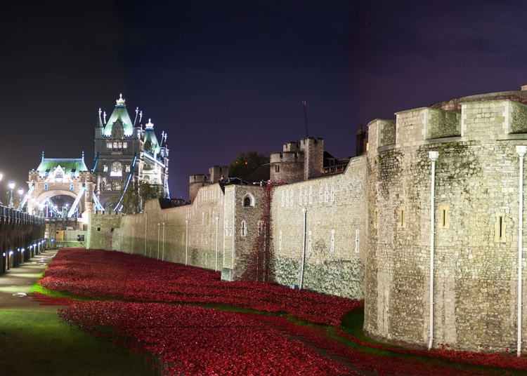 Tower & Poppies - Image 0