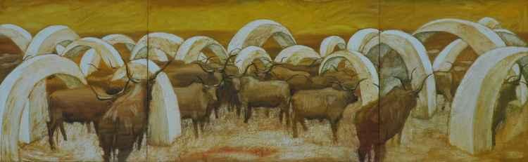 Bulls (3 parts ) -