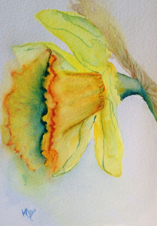 One more Daffodil - Image 0