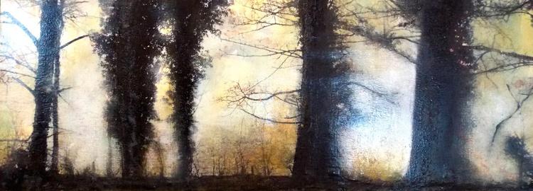 Black Forest - Image 0