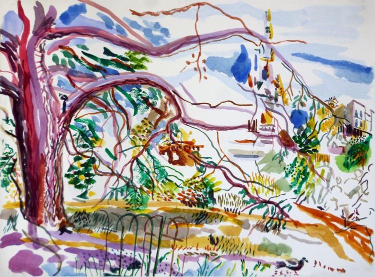 Cedar Tree II - Image 0
