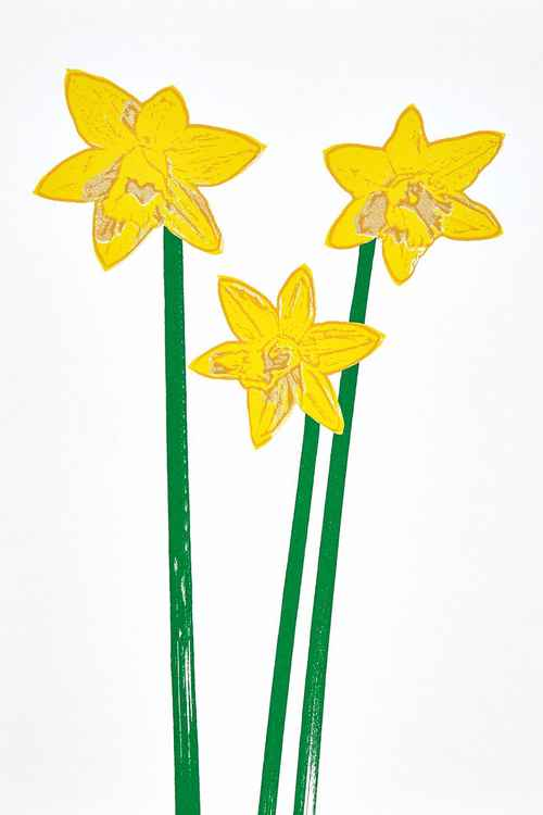 Daffodils 2 -