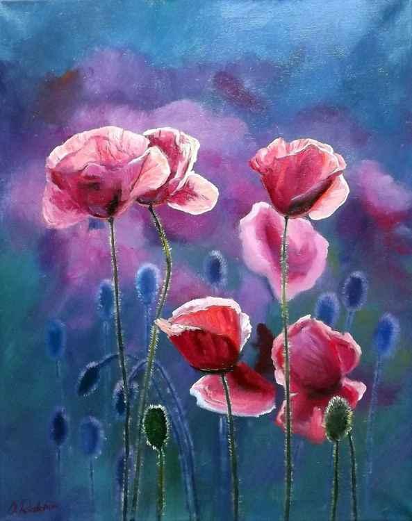 Poppies 5 -