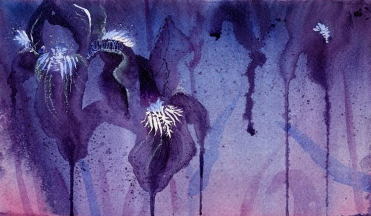 Iris, Blue and Purple - Image 0