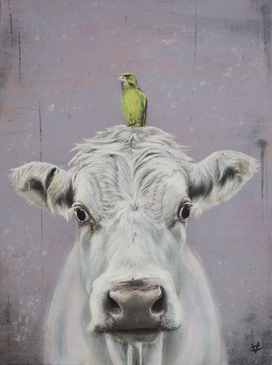 The Greenfinch and the Cow - Image 0