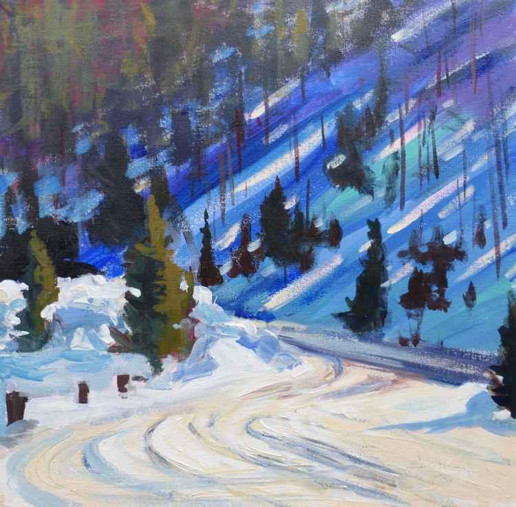 Rocky Mountain National Park Patterns -