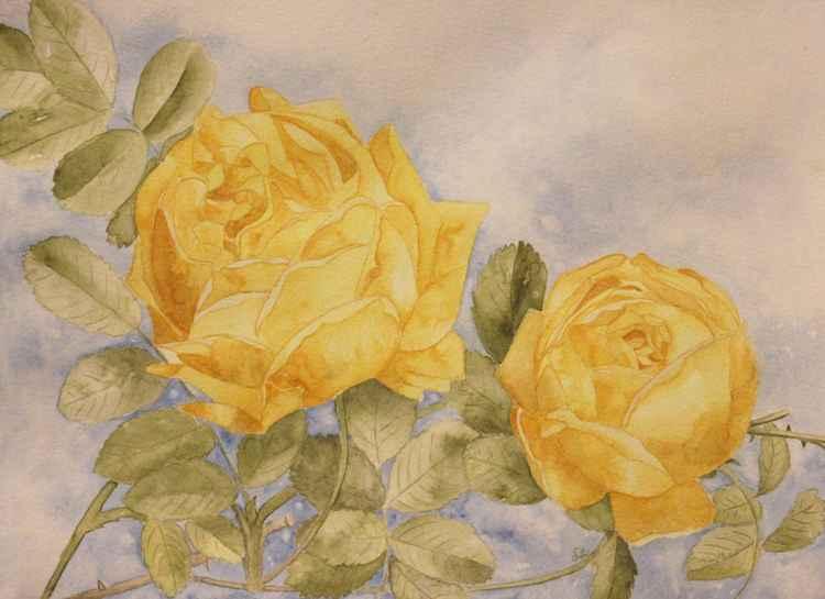 Friendship Roses -