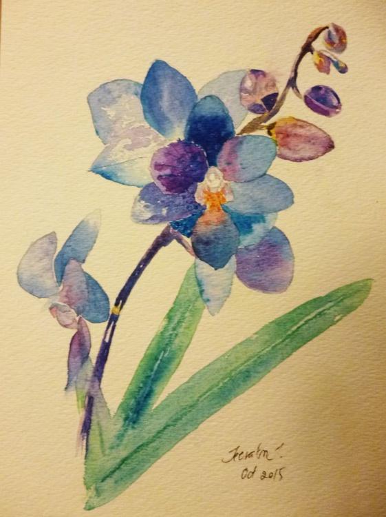 Thai Orchid - Image 0