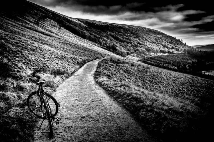 Trail Rider! -