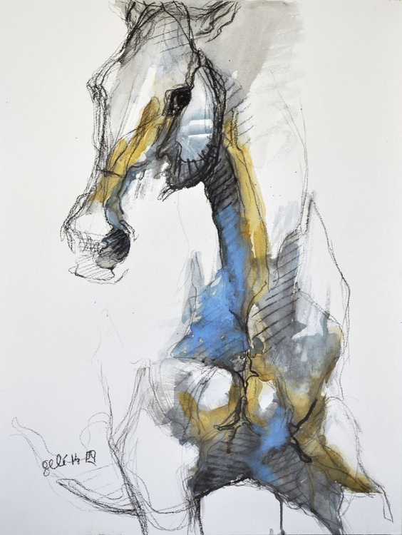 Equine Nude 4t - Image 0