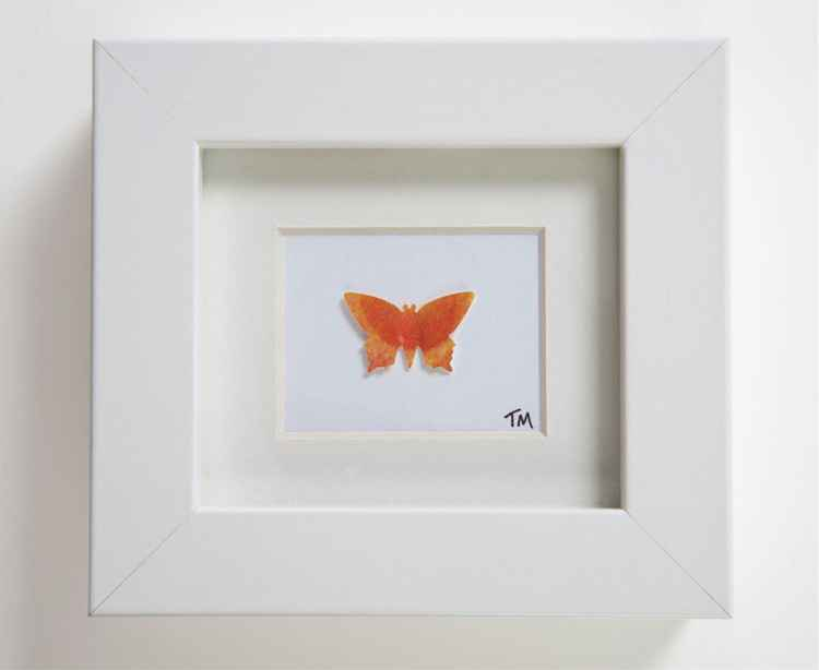 Single Butterfly No 8 -