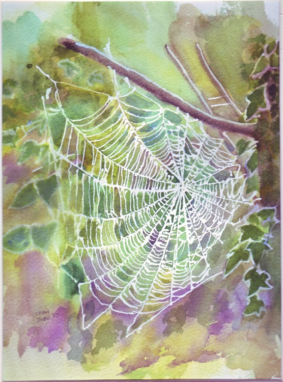 Frosted Spider's Web - Image 0