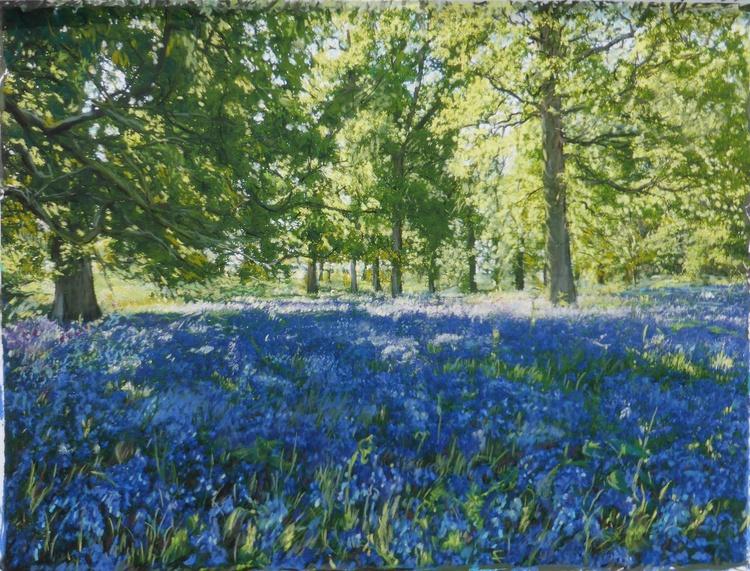 Study 1.  Spring Woodland - Image 0