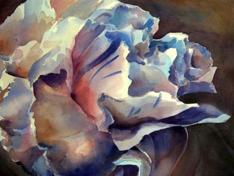 Blue Carnation -