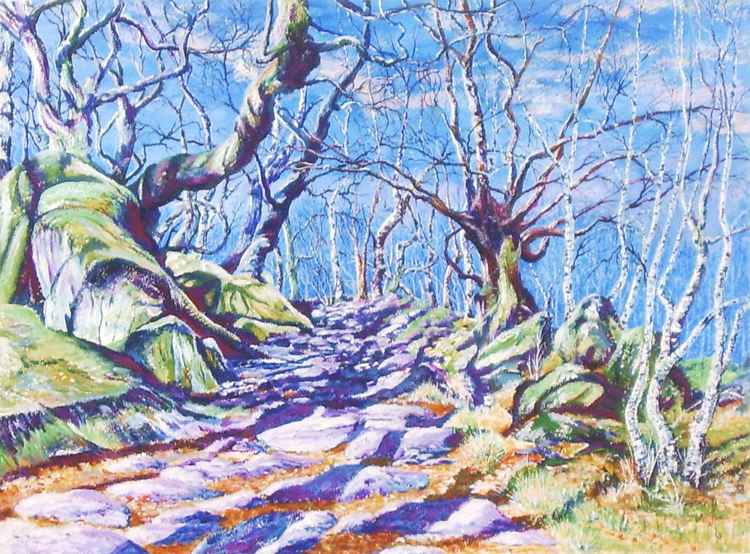 Padley Gorge Light and Shadow -