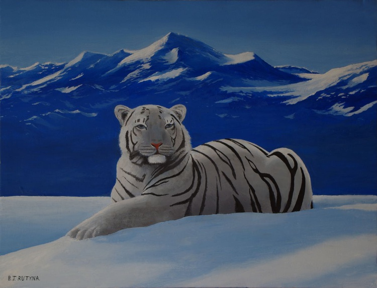 Tiger in the snow - Image 0