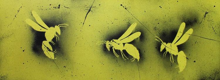Wasps - Image 0