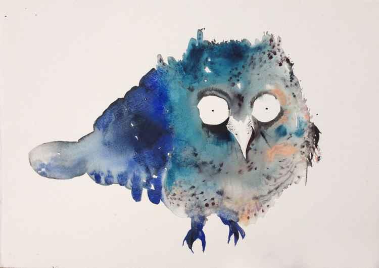 Baby owl -